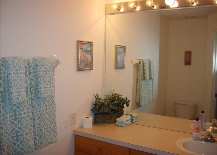 Master bathroom has shower as well as tub