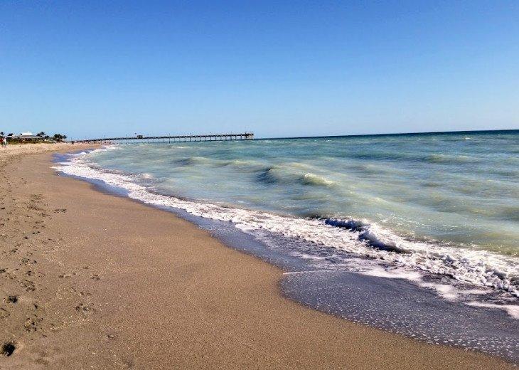 Venice Beach pier in background