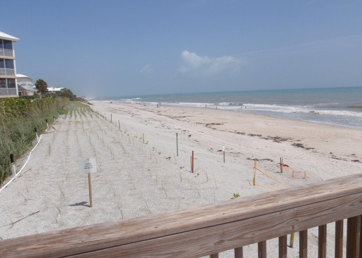Sea Oaks Oceanfront Condo! #25
