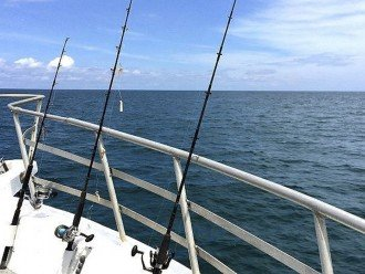 Deep Sea fishing available out of Port Canaveral 1 mile north