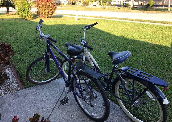 Trek and Schwinn Bikes