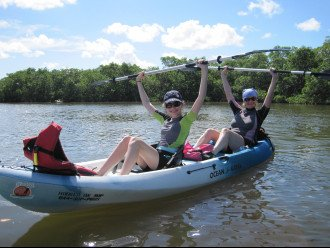 Enjoy a wildlife kayak day out - so much fun