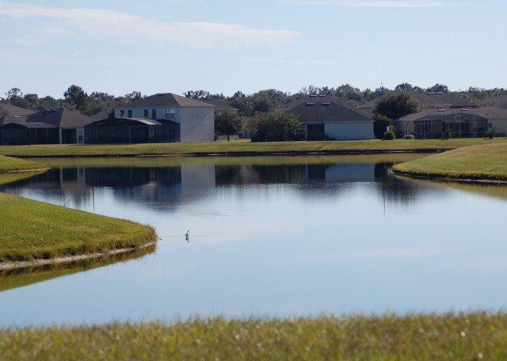 Florida Lake VILLA #5 #37