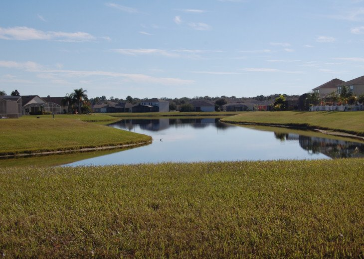 Florida Lake VILLA #5 #34