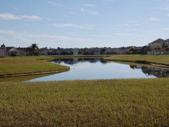 Florida Lake VILLA #5 #1