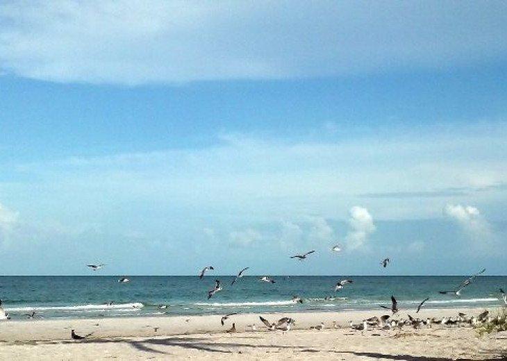 Barrett Beach Bungalows #21