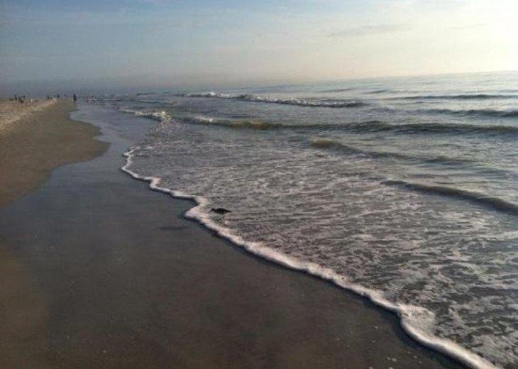Barrett Beach Bungalows #24