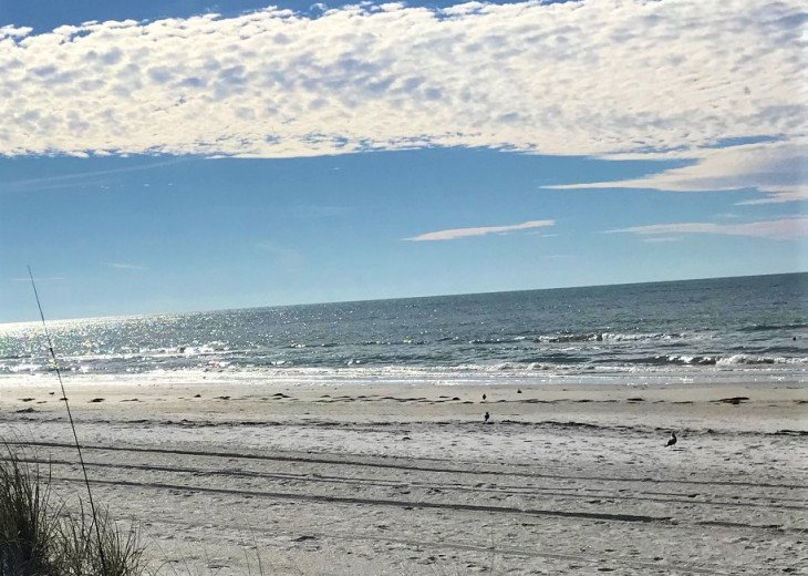Location, Location, Location! Stay on The Gulf BEACH SIDE! Steps to the Beach! #1