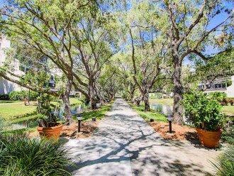Bayside Garden