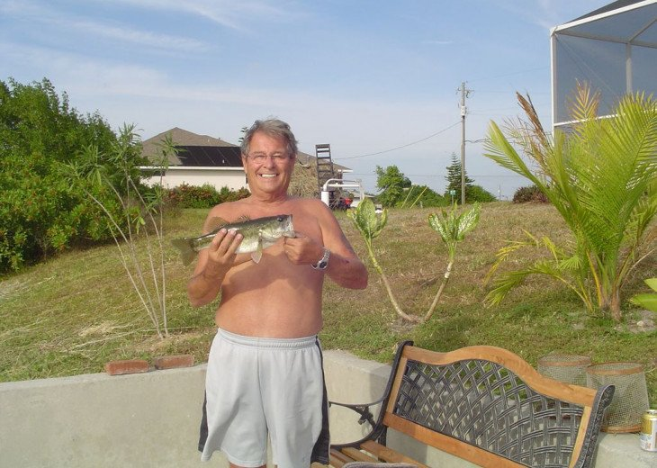 Large mouth bass caught from dock (by owner)