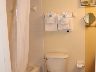 master bathroom with curved shower curtain, granite countertop and mirrors