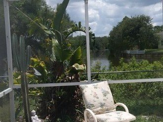 Tropical Sanctuary, island included! Pet friendly. #1