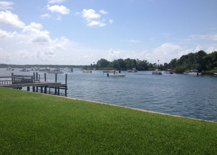 Fish from the dock, paddle board, kayak, swim with manatees, relax by the pool! #9