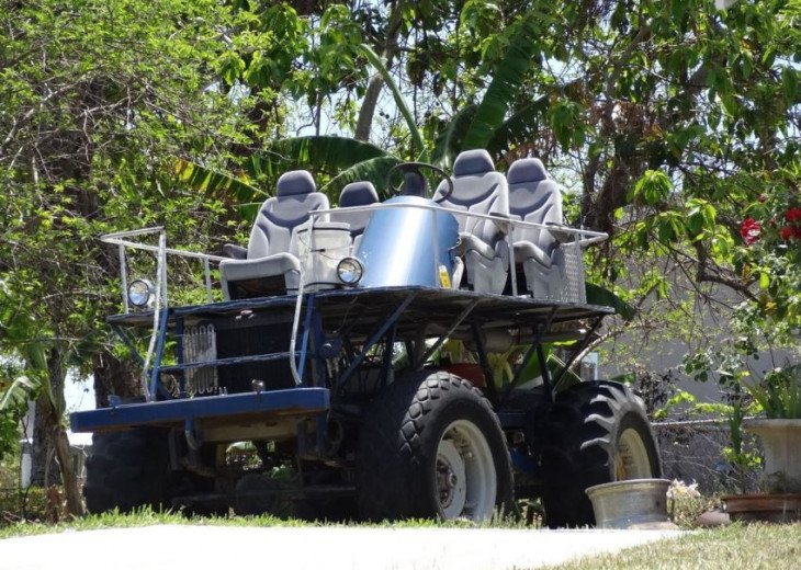 Swamp buggy tours