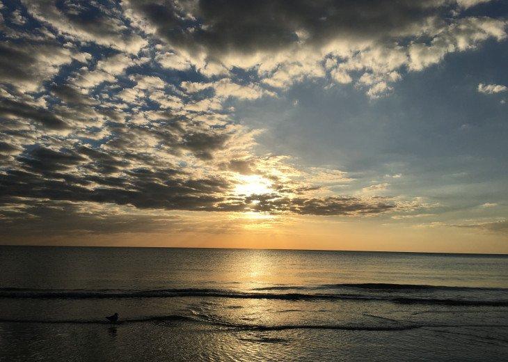 Sunset Inn & Cottages- 1 Bdrm/1 Bath-#1 on Trip Advisor- Treasure Island FL #54