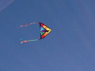 Relax and Fly a Kite