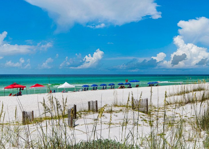 Dunes of Seagrove A108 #33