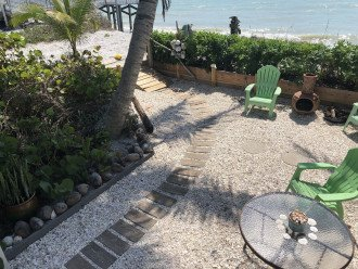 Our unique shell front yard just steps to the Gulf