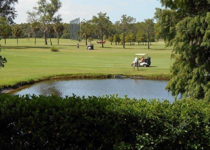 Golf Course Tarpon Springs Condo. #13