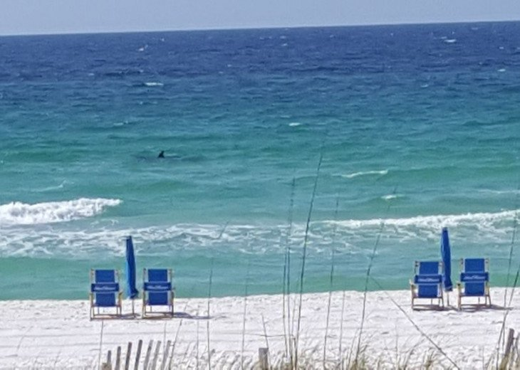 IP Condo215, Fort Walton Beach, Florida Vacation Rental by Owner #27