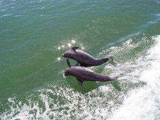 WINDSTAR BEACH & GOLF VILLA #1