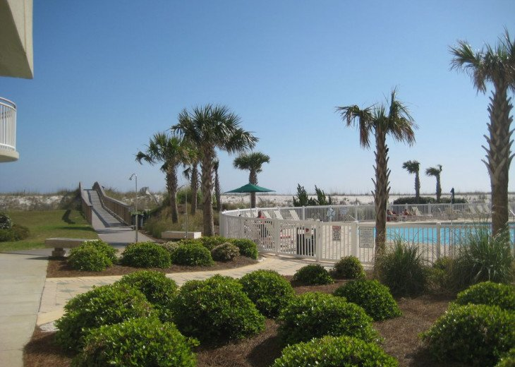 Beach Colony East, Magnificent 17th Floor Penthouse Views, directly beachfront #28