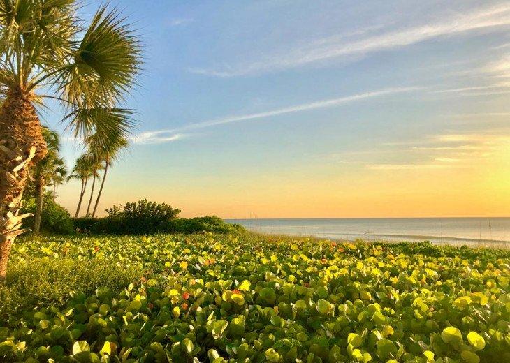 !!VANDERBILT BEACH!! BEACH, OCEAN, SUN & FUN, LIFE & LEISURE #22