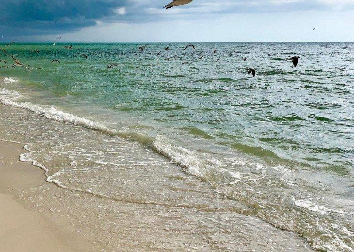 !!VANDERBILT BEACH!! BEACH, OCEAN, SUN & FUN, LIFE & LEISURE #29