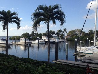 View of private island & marina