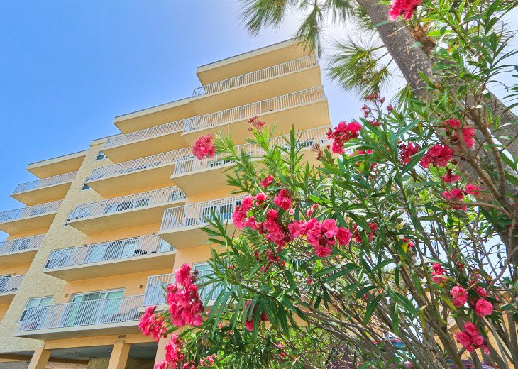 Collwood Condos Direct Beach View #3