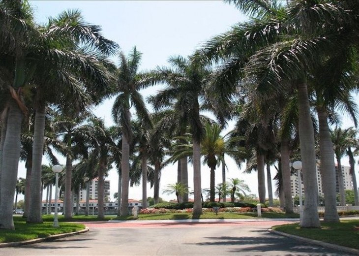 2 BR, 2 BA, Sleeps 4, Poolside Condo with all the amenities #3
