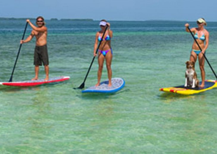 Paddle board in the ocean or in the canal!