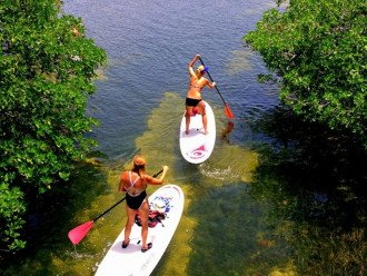 Paddle Boarding is so much fun!