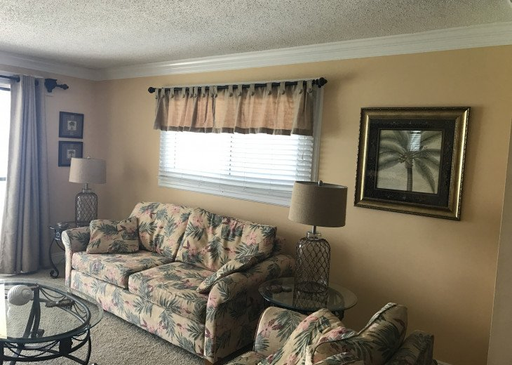 One bedroom living area (sleeper sofa)