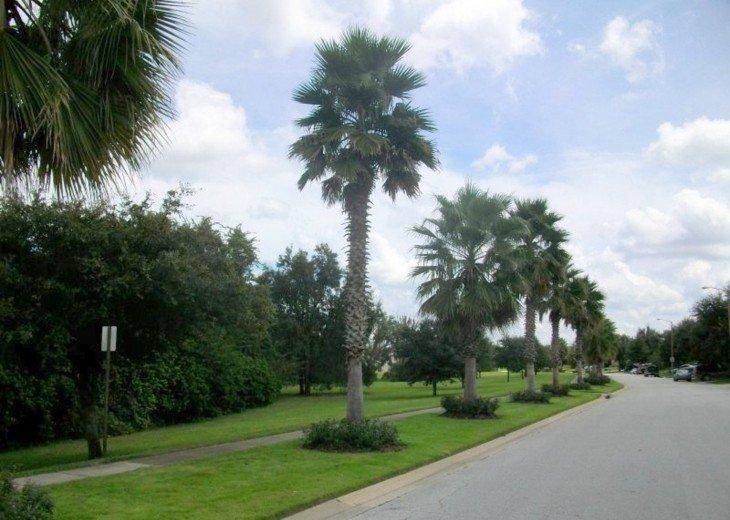 Community street scene