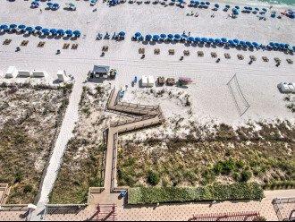 Sandy Cheeks at Panama City Beach #1