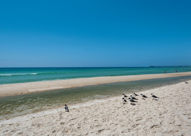 NEW LISTING! Tidewater 911 - Relaxing 2BR/3BA Oceanfront Paradise - Sleeps 8 #74