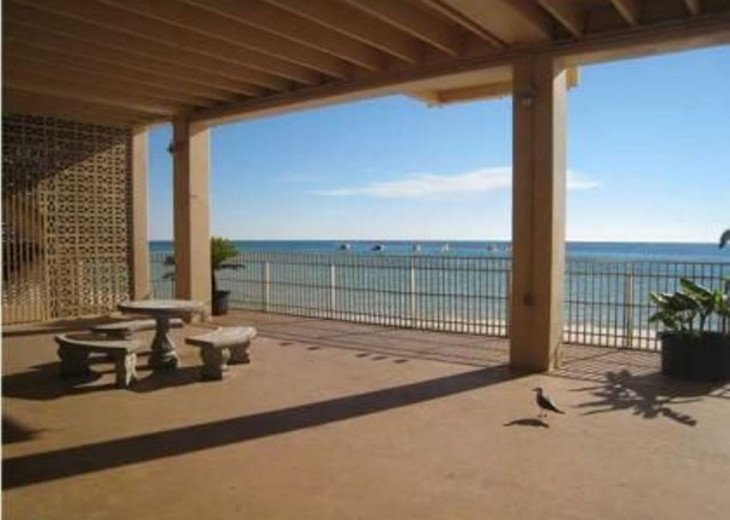 Gulf Front condo PRIVATE JACUZZI BATH and almost a mile of secluded beach #4