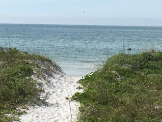 Awesome oceanfront 2 bedroom condo #1