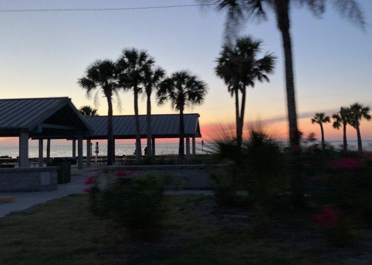 FLORIDA PARADISE #15