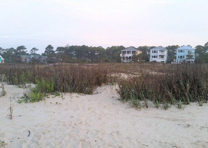 View of our neighborhood from beach.