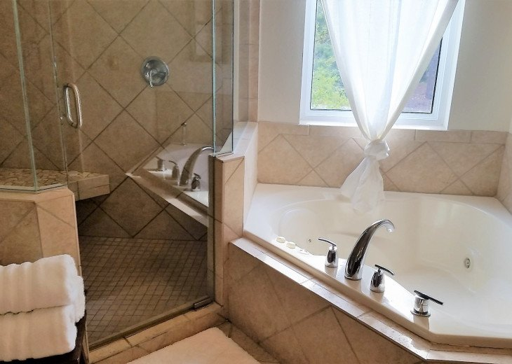Two-person shower and jacuzzi tub in master suite.