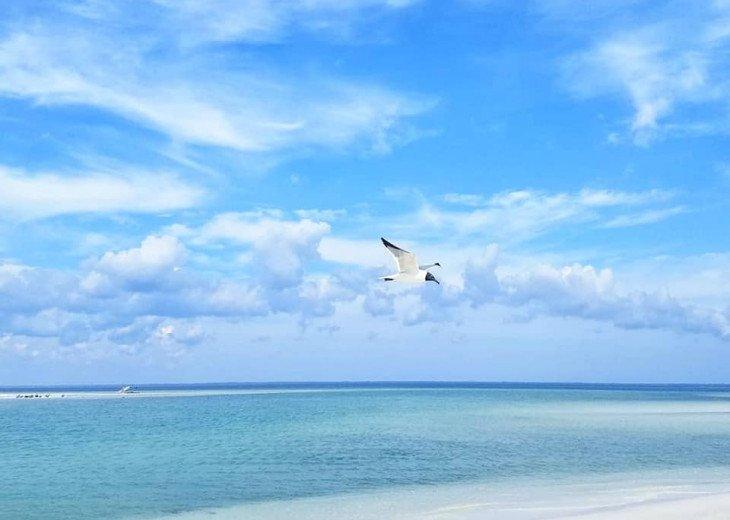 Beautiful emerald green water and white sand beaches await.