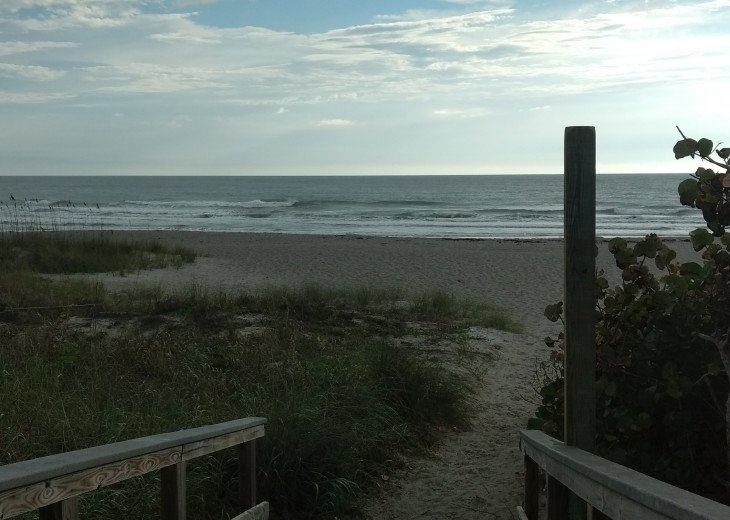 Newly Updated, Cozy, Quiet, convenient and steps from the Ocean. #11