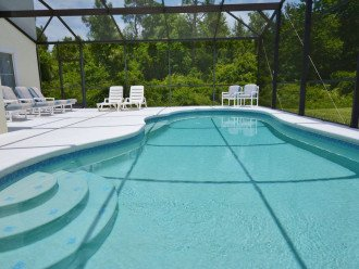 CARDINAL'S HIDEAWAY: 4 bed/4bath secluded lake view disney home #1
