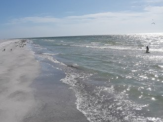 Clearwater Sugar Beach #1