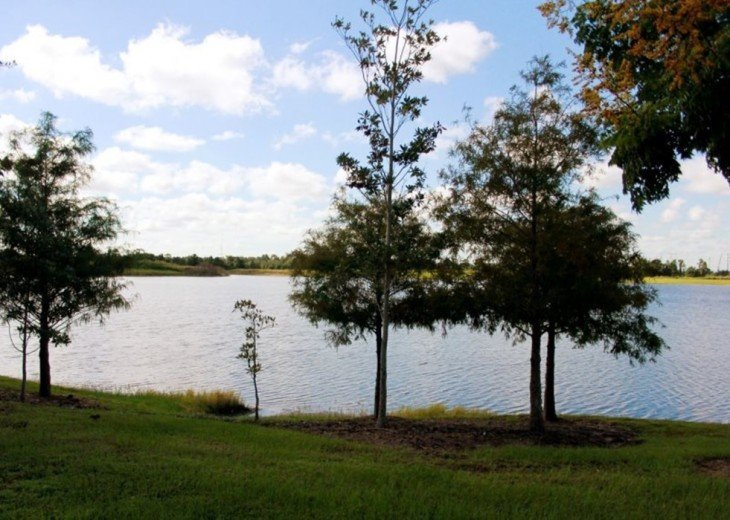 Serene Waters Vista Cay with a view of water/SeaWorld #32