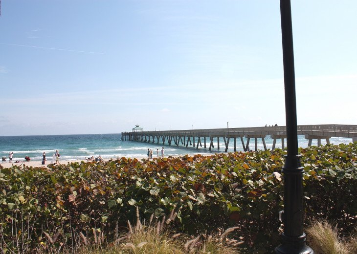 Beachside PH North Ocean Blvd. Ocean 100 Ft. #35