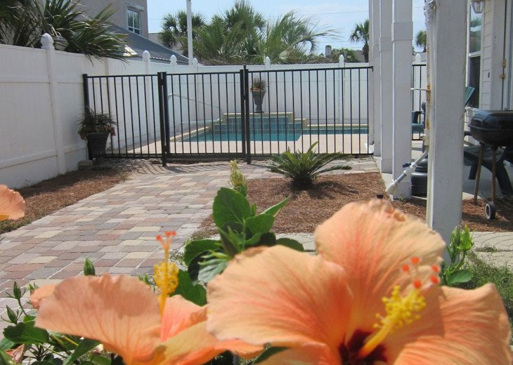 Steps to Beach - Large Beach House with Pool #19