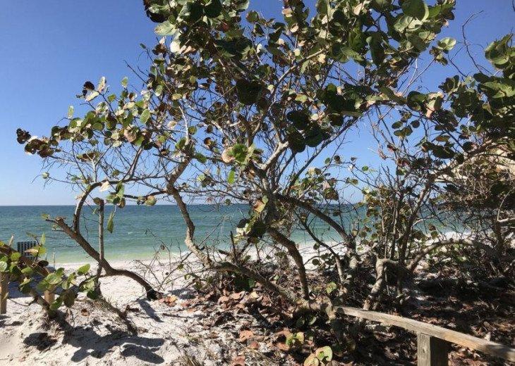 Little Gasparilla Island: Waterfront Cabin Paradise #21